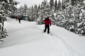 Image of skiers on road to Chipmunk Bluff after new snowfall