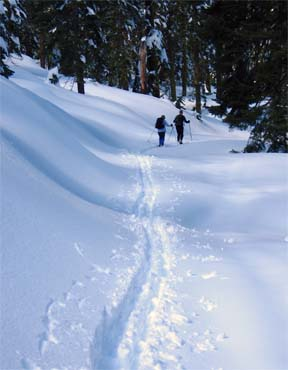 Image of skiers on road to Blue Creek Point